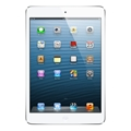 Apple 16 GB iPad Air Silver (Wi-Fi Only) Model # MD788LL-A